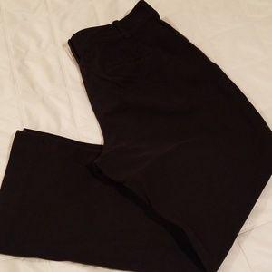 Ann Taylor black pant